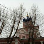 Вудвул - благоустройство, уход за деревьями и зелеными насаждениями
